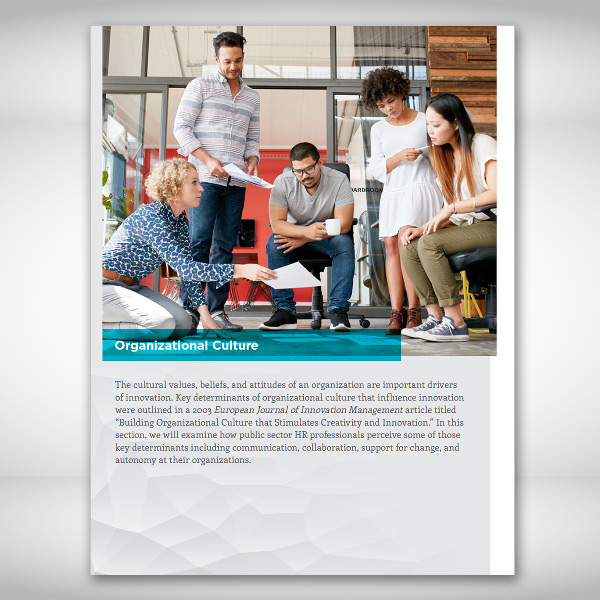 IPMA-HR Benchmarking Report Section Page